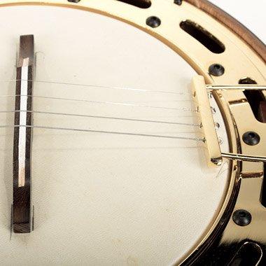 Banjo Pro Eléctrico Rozini A316413