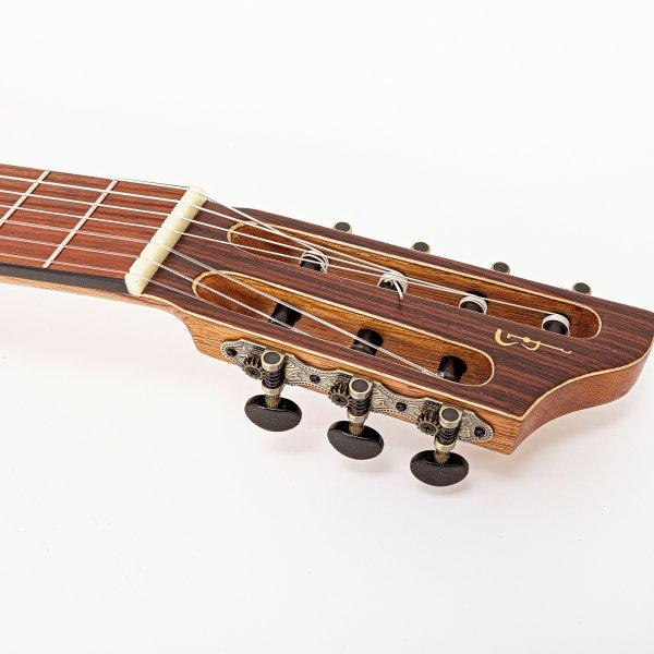 Guitarra de siete cuerdas - Indian Rosewood, acústica APC A170041