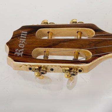 Rozini   Banjo Pro Eléctrico A316413