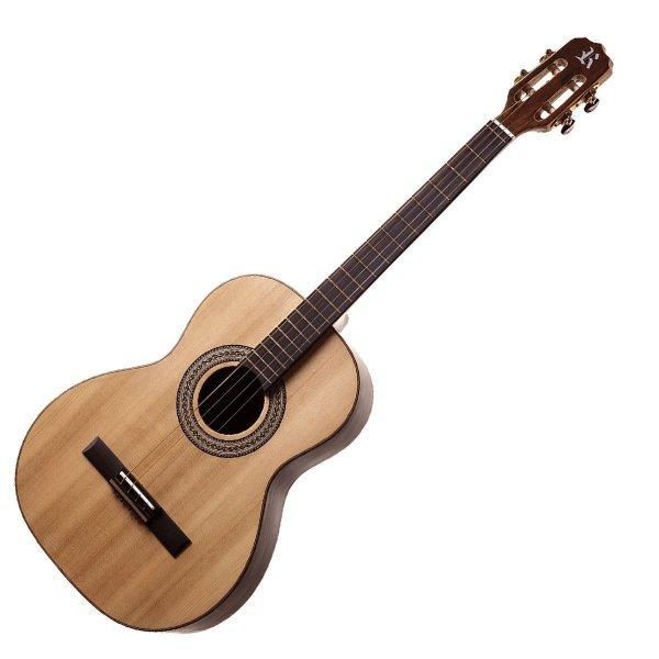 Guitare ténor 4 cordes Profissional Elétrico Rozini A316200