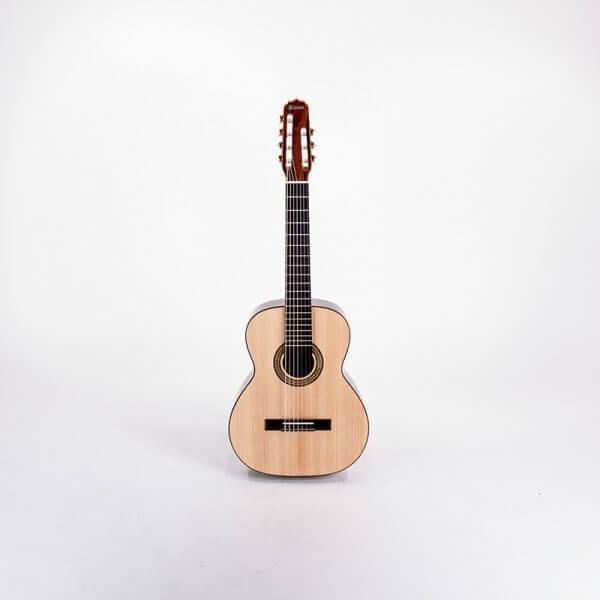 Siebensaitige Gitarre Profissional Rozini A316120